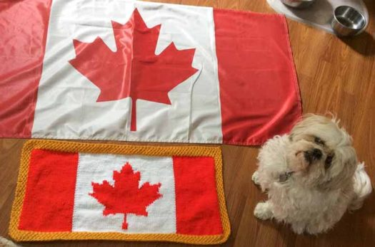 "The knitted flag with a purchased flag to show that the width to height ratios are similar. While it looks like Zoey is ""standing on guard for thee"", you will note that her food bowl is in the upper right corner; she is ""standing"" in wait of something else."